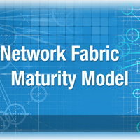 A Manufacturing Network Fabric Maturity Model