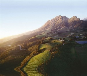 Photo courtesy of Stellenbosch American Express Wine Routes